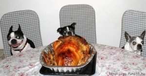 Turkey cooked