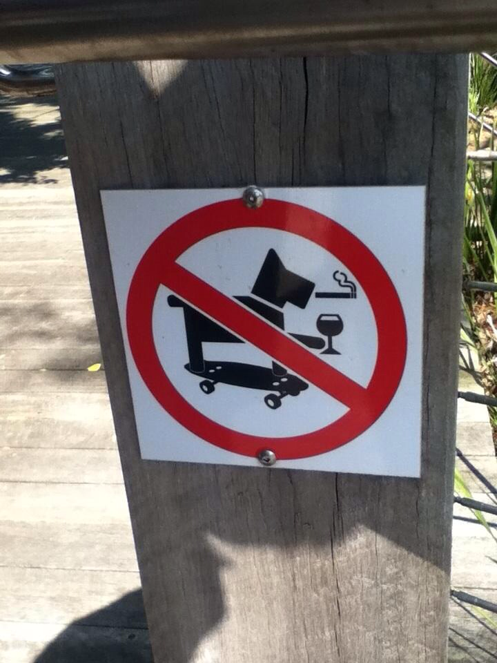 no cool dogs allowed
